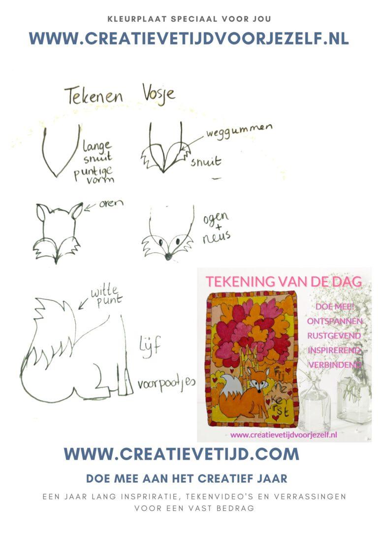 tekenen vos