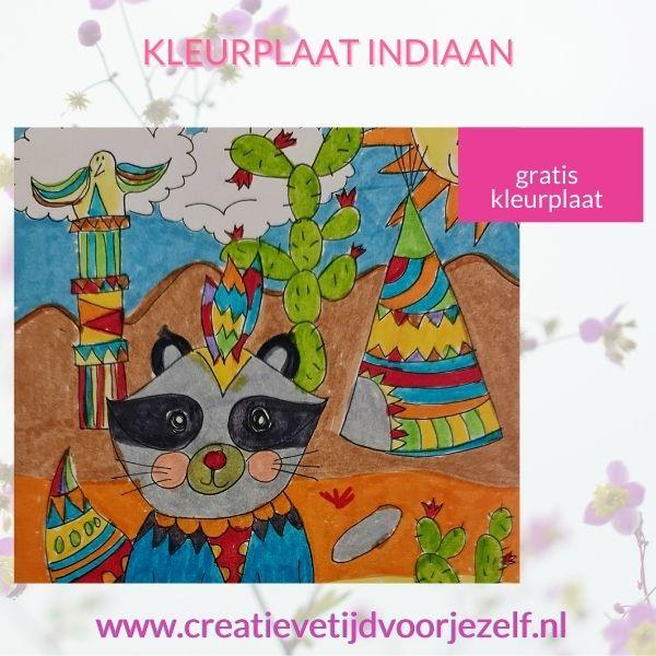 kleurplaat indiaan