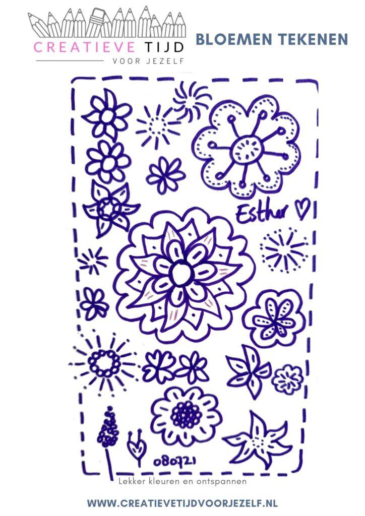 het tekenen van bloemen